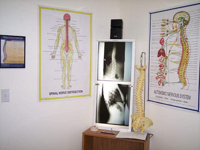 Spad Chiropractic Office